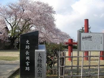 史跡長岡宮跡.JPG