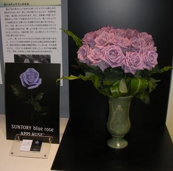 胡蝶蘭No2.jpg